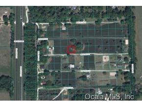 Real Estate for Sale, ListingId: 35210218, Citra,FL32113
