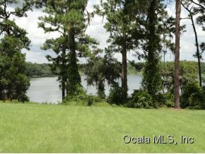 Real Estate for Sale, ListingId: 35313862, Ocklawaha,FL32179