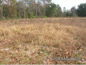 Real Estate for Sale, ListingId: 35365590, Ocala,FL34473