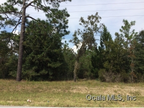 Real Estate for Sale, ListingId: 35419167, Williston,FL32696