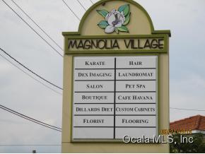 Commercial Property for Sale, ListingId:35477231, location: 923 N MAGNOLIA AVE Ocala 34470