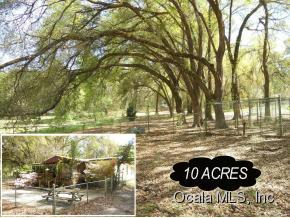 Real Estate for Sale, ListingId: 35571355, Williston,FL32696