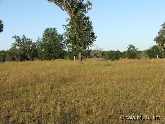 Real Estate for Sale, ListingId: 35740858, Bronson,FL32621