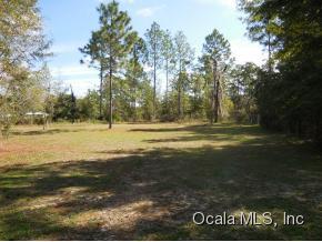 Real Estate for Sale, ListingId: 35762471, Bronson,FL32621