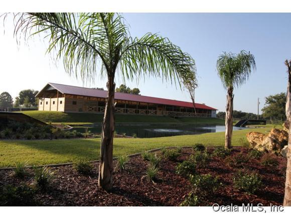 31.86 acres Morriston, FL