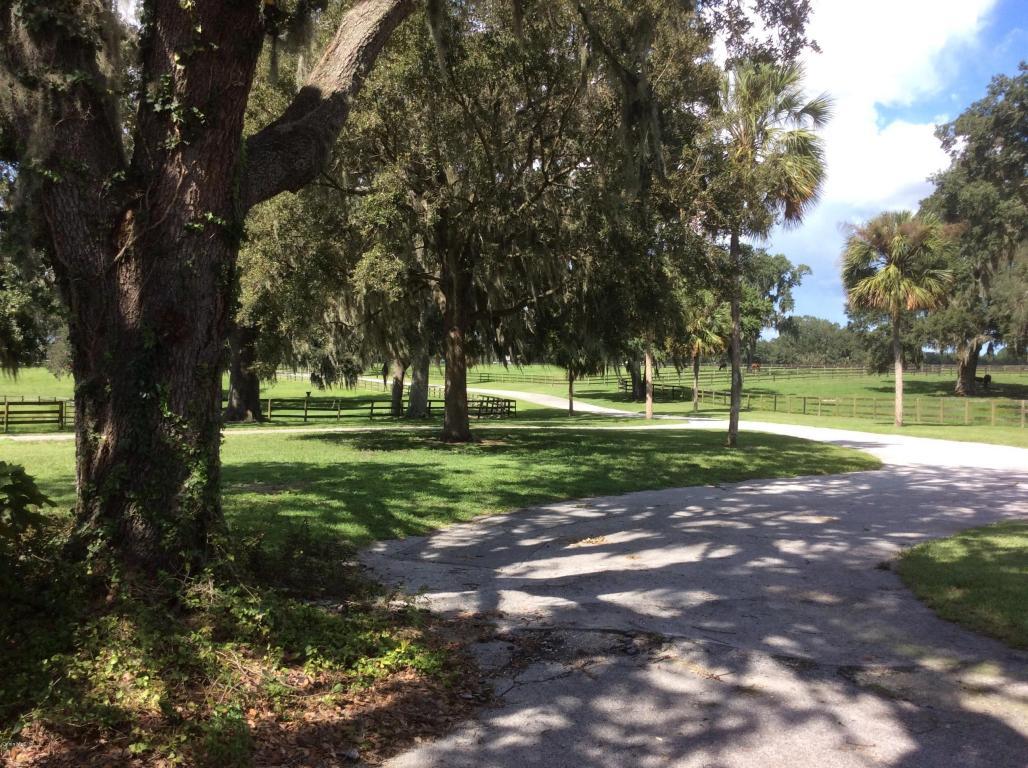 38 acres Reddick, FL