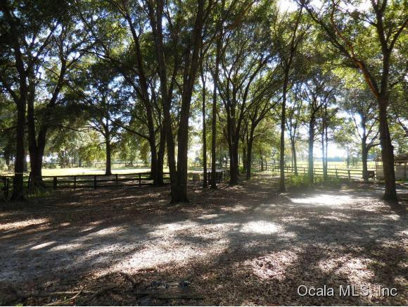 Real Estate for Sale, ListingId: 36202722, Williston,FL32696