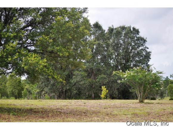 Real Estate for Sale, ListingId: 36326347, Bronson,FL32621