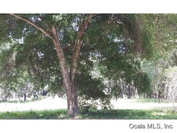 Real Estate for Sale, ListingId: 36630892, Fruitland Park,FL34731