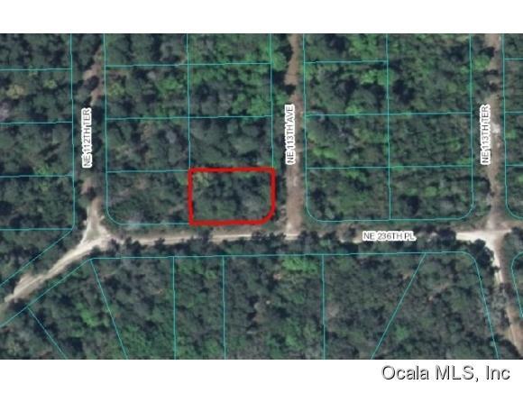 Real Estate for Sale, ListingId: 36636982, Ft Mc Coy,FL32134