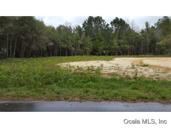 Real Estate for Sale, ListingId: 36883612, Summerfield,FL34491