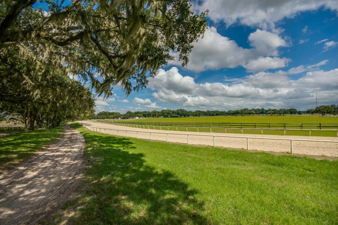 Image of Acreage w/House for Sale near Morriston, Florida, in Levy County: 110.5 acres
