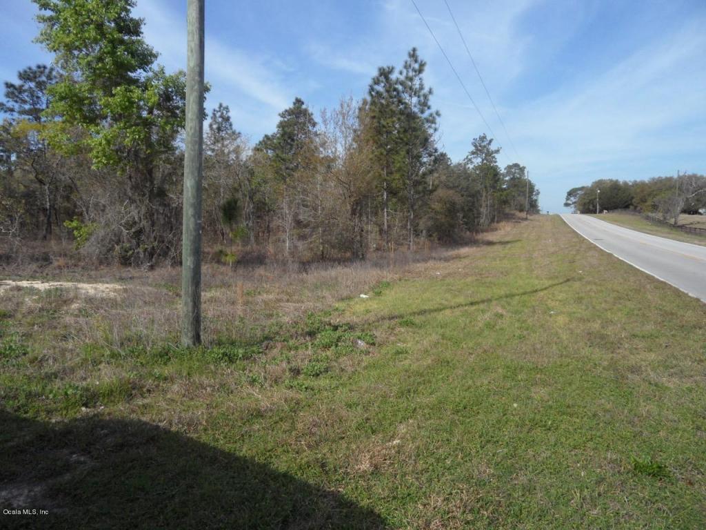 E Levy St, Williston, FL 32696