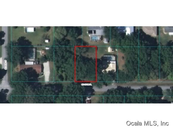 primary photo for 0 SE 157 Place, Summerfield, FL 34491, US
