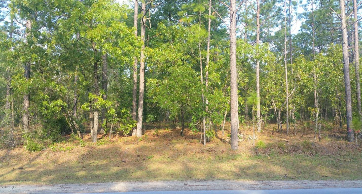 primary photo for 00 SW 129th Terrace Road, Dunnellon, FL 34432, US