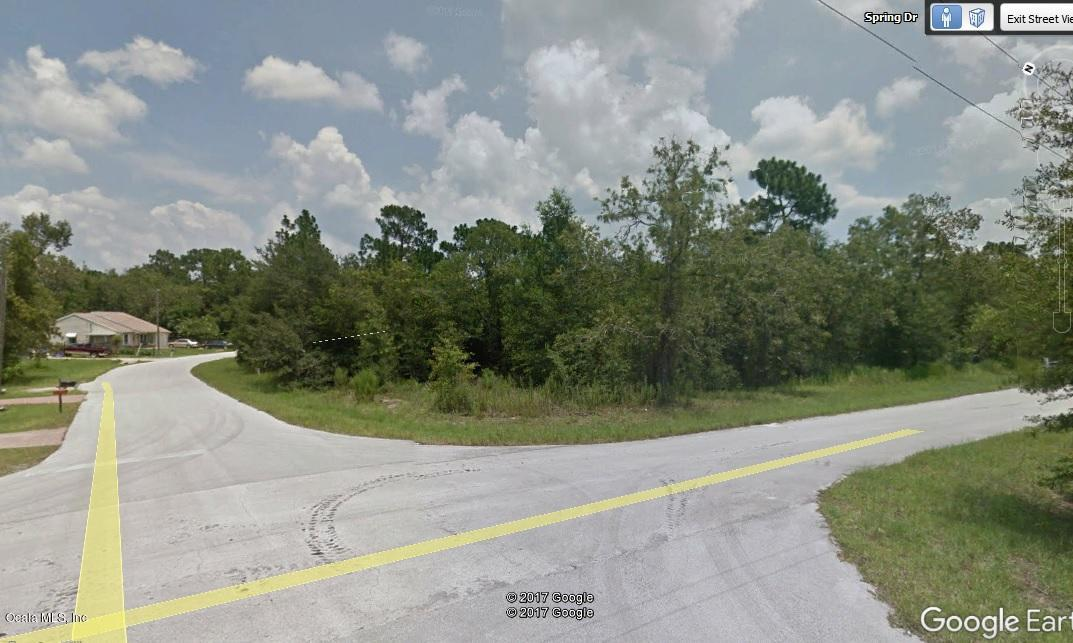 primary photo for 0 Spring Drive, Ocala, FL 34472, US