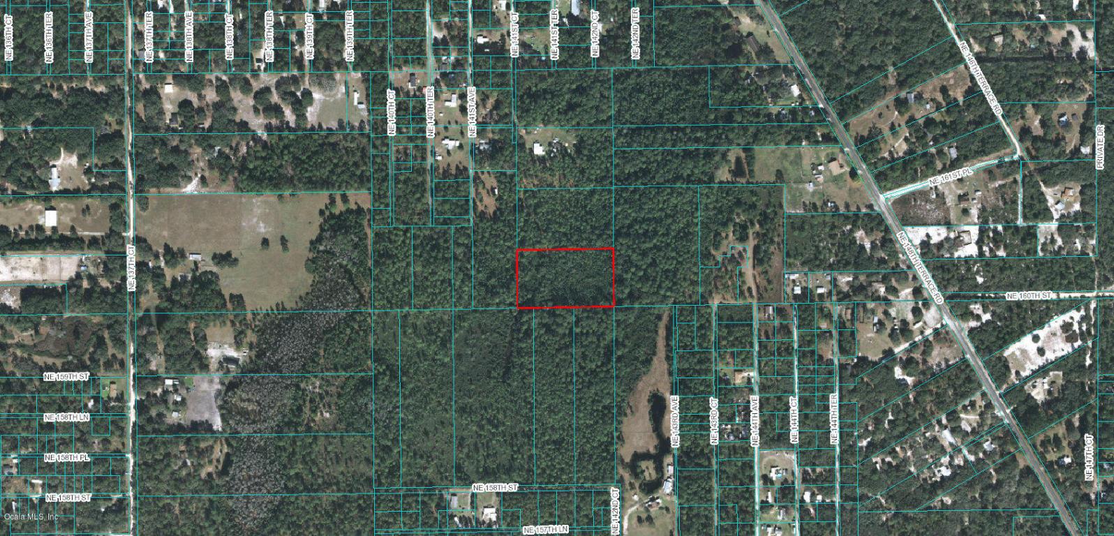 0 NE 141 Court Fort McCoy, FL 32134