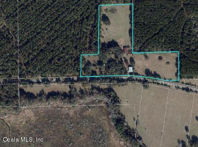 primary photo for 21507 CR 325, Island Grove, FL 32654, US