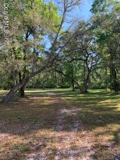 1542 Se 349 Highway Old Town, FL 32680