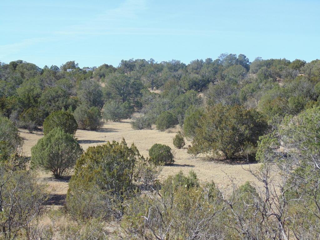 primary photo for 57174 N Bridge Canyon Parkway 4136, Seligman, AZ 86337, US