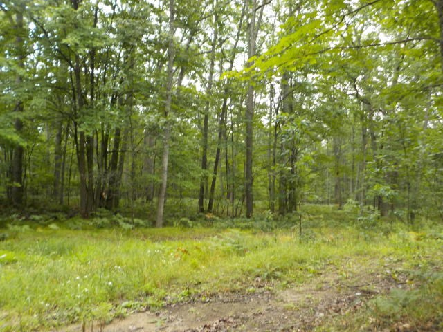 primary photo for 00 Forest Way 327, Roscommon, MI 48653, US