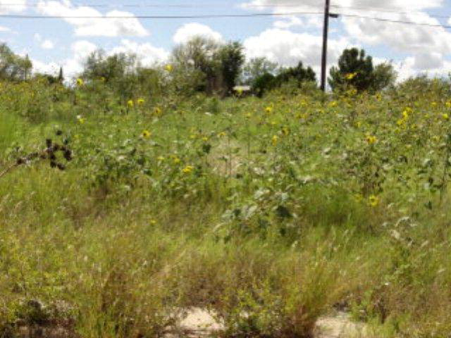 8.84 acres by Big Spring, Texas for sale