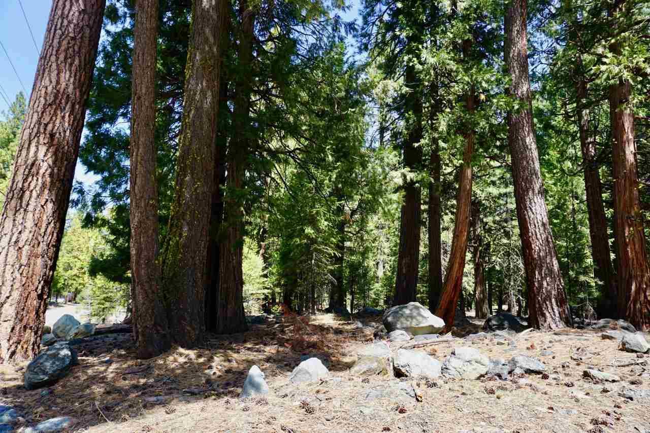 59 Yonkalla Trail Graeagle, CA 96103