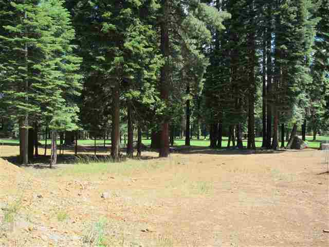 157 Slim Drive Lake Almanor West, CA 96020