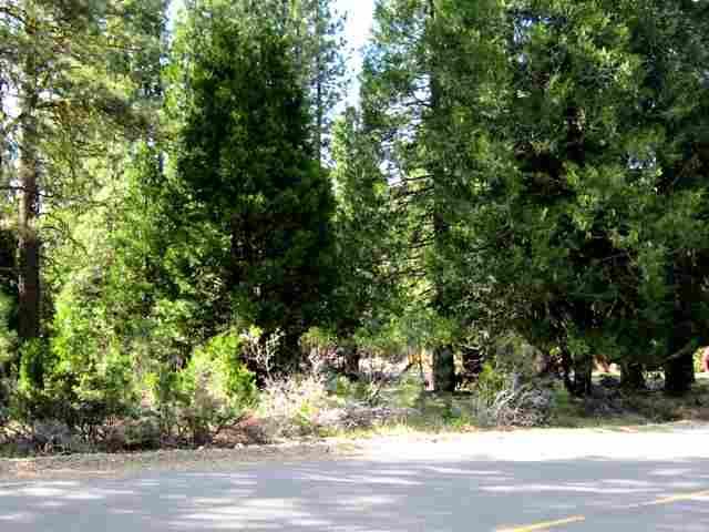 43 Wishram Trail Graeagle, CA 96103