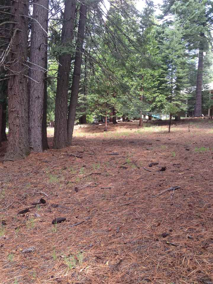 1005 Timber Ridge Road Lake Almanor, CA 96137
