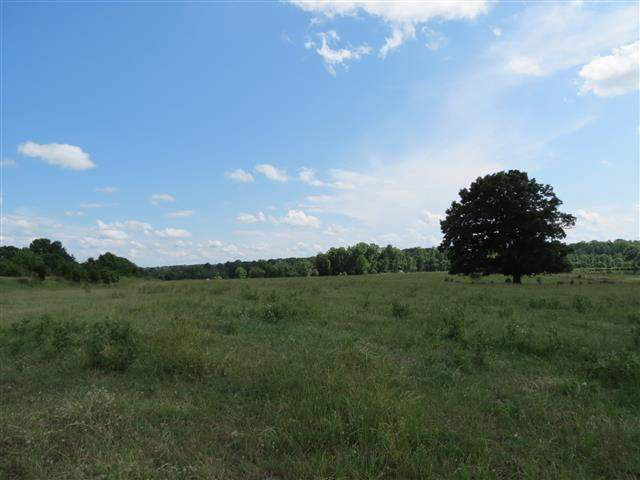 Land for Sale, ListingId:23880354, location: 175 acres Hwy 49 York 29745