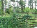 Real Estate for Sale, ListingId: 31635918, Catawba,SC29704