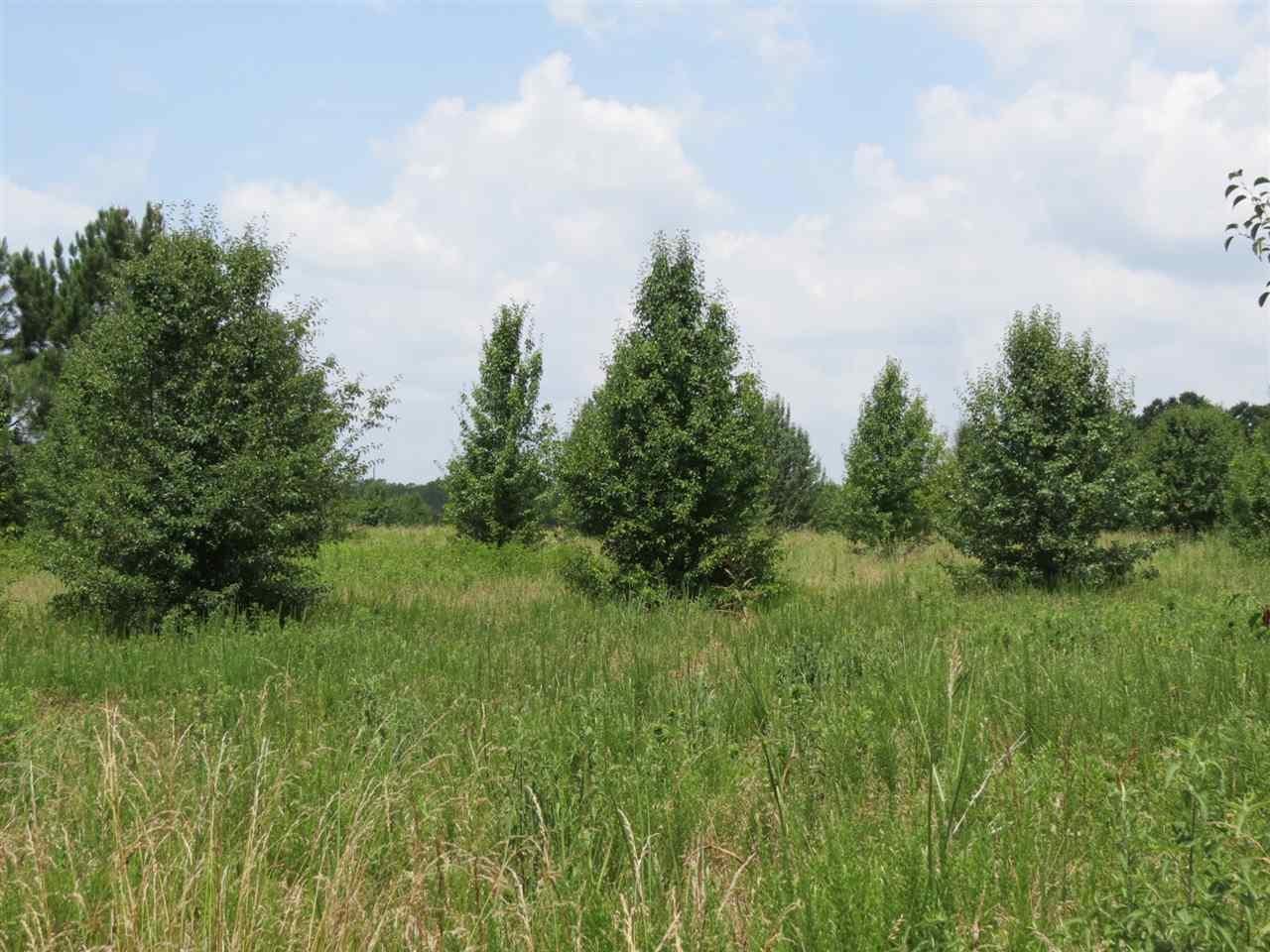 Land for Sale, ListingId:34074303, location: 15 AC Oak Park Rock Hill 29730