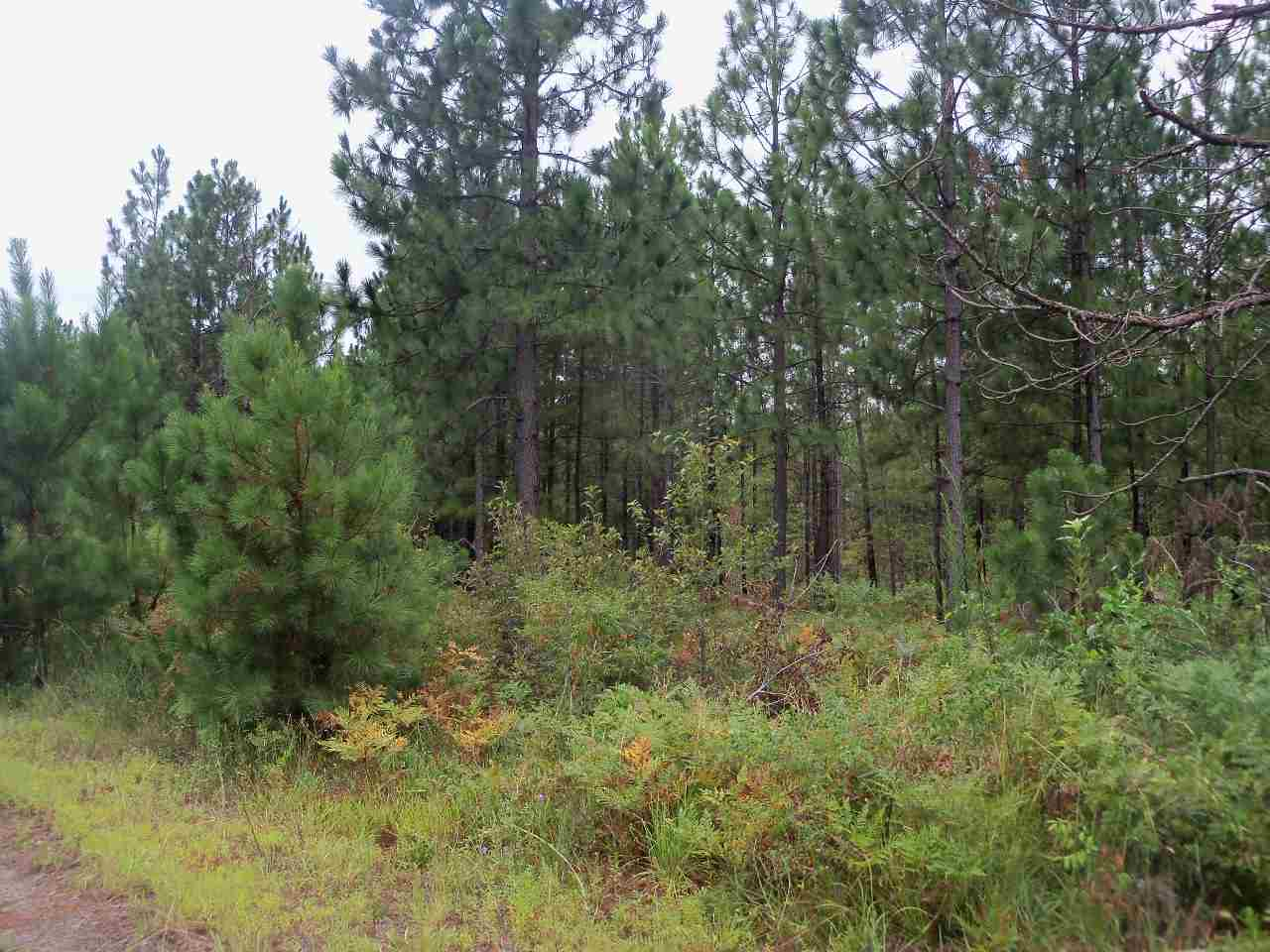 Land for Sale, ListingId:34784725, location: 00 Kershaw Camden Hwy Kershaw 29067