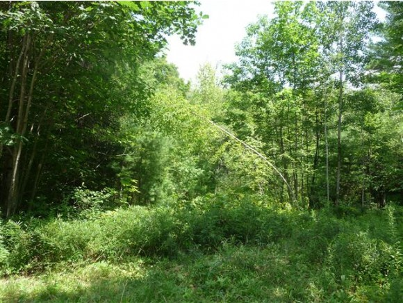 Land for Sale, ListingId:37174354, location: 156 Chalk Pond Road Newbury 03255