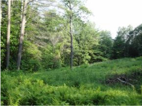 225 Red Oak Hill Rd, Warren, NH 03279
