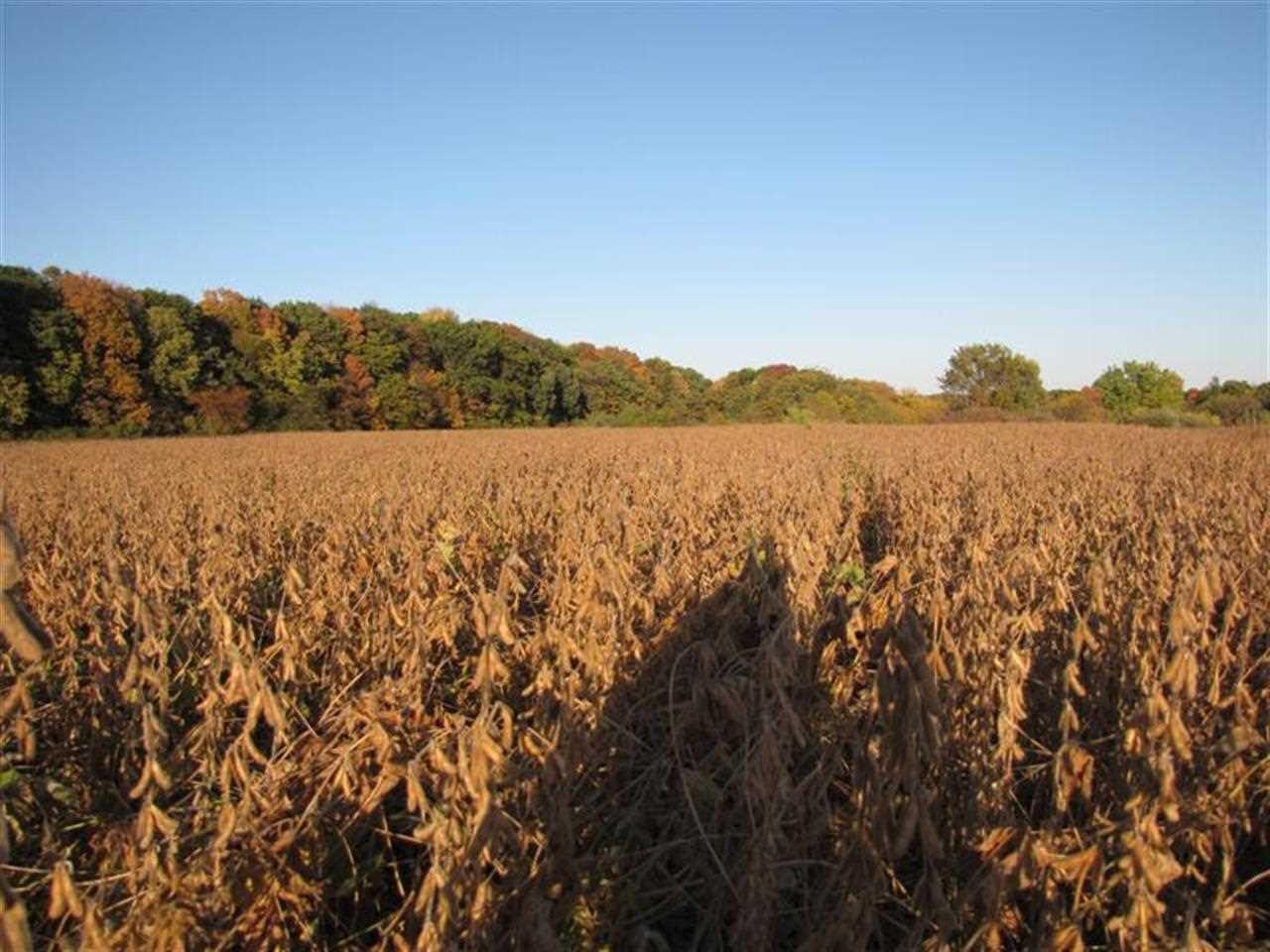 Real Estate for Sale, ListingId: 28964121, Illinois City,IL61259