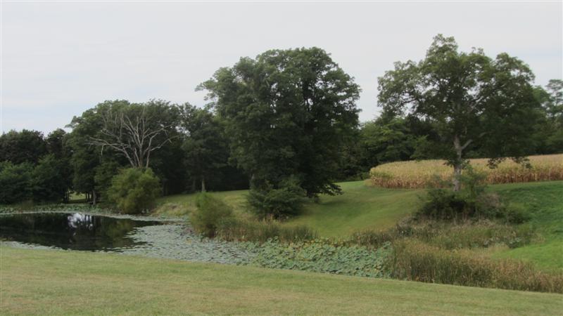 Real Estate for Sale, ListingId: 35519568, Illinois City,IL61259