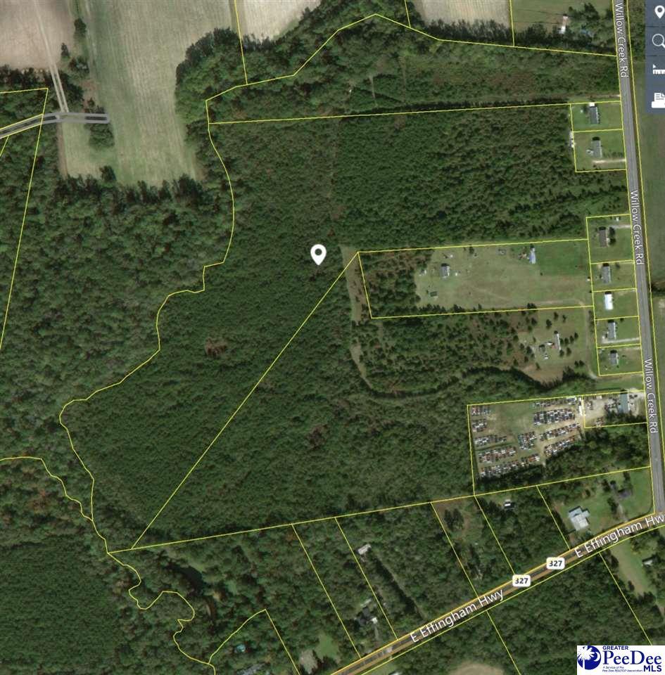 Willow Creek Road Effingham, SC 29541