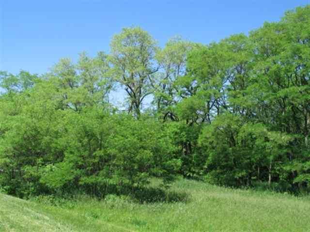 Real Estate for Sale, ListingId: 17663456, Lake Carroll,IL61046