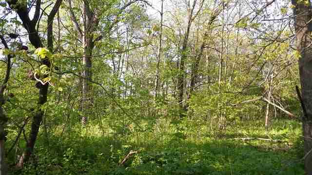 Real Estate for Sale, ListingId: 17663351, Galena,IL61036