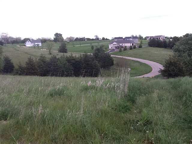 Real Estate for Sale, ListingId: 17940388, Galena,IL61036