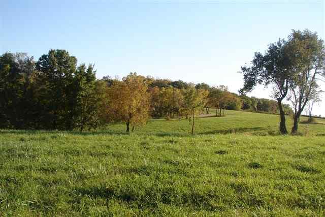 Real Estate for Sale, ListingId: 29326774, Scales Mound,IL61075