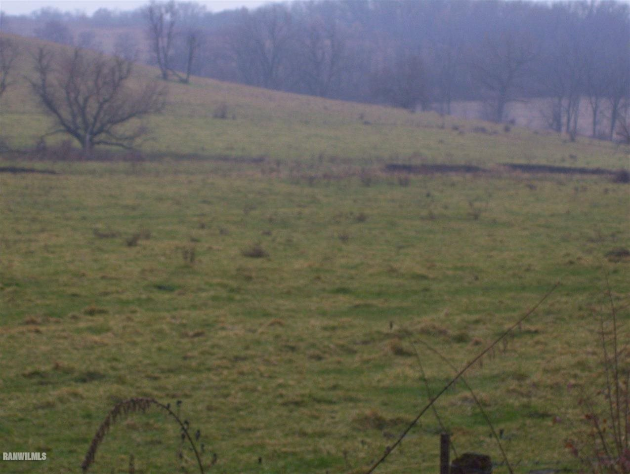 Image of Acreage for Sale near Pearl City, Illinois, in Stephenson county: 217.00 acres