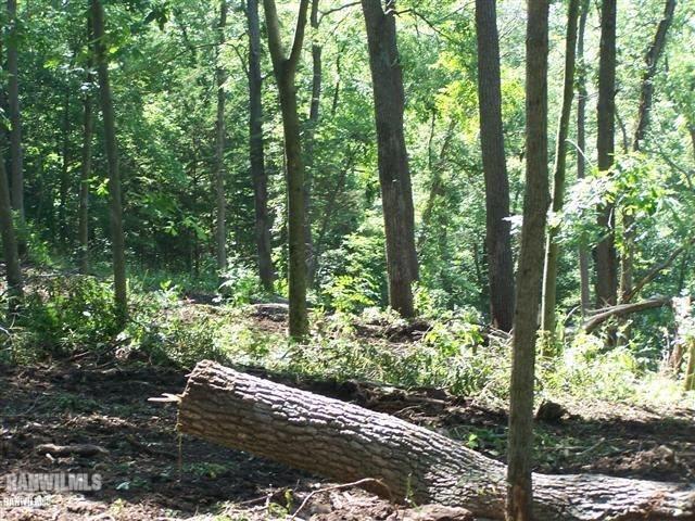 Image of Acreage for Sale near Elizabeth, Illinois, in Jo Daviess County: 5.74 acres