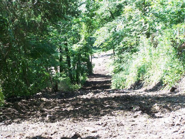 Image of Acreage for Sale near Elizabeth, Illinois, in Jo Daviess County: 5.39 acres