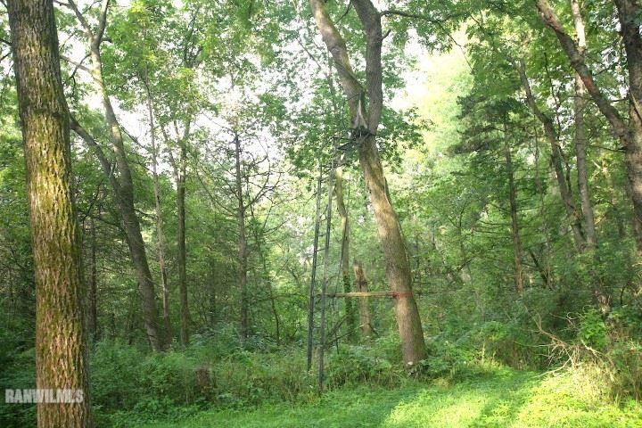 Image of  for Sale near Pearl City, Illinois, in Stephenson County: 40 acres