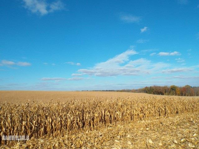 Image of  for Sale near Pearl City, Illinois, in Stephenson County: 160 acres