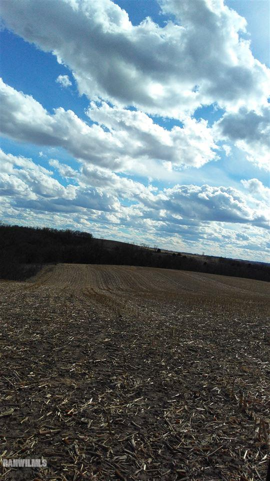 Image of  for Sale near Darlington, Wisconsin, in Lafayette County: 104.9 acres