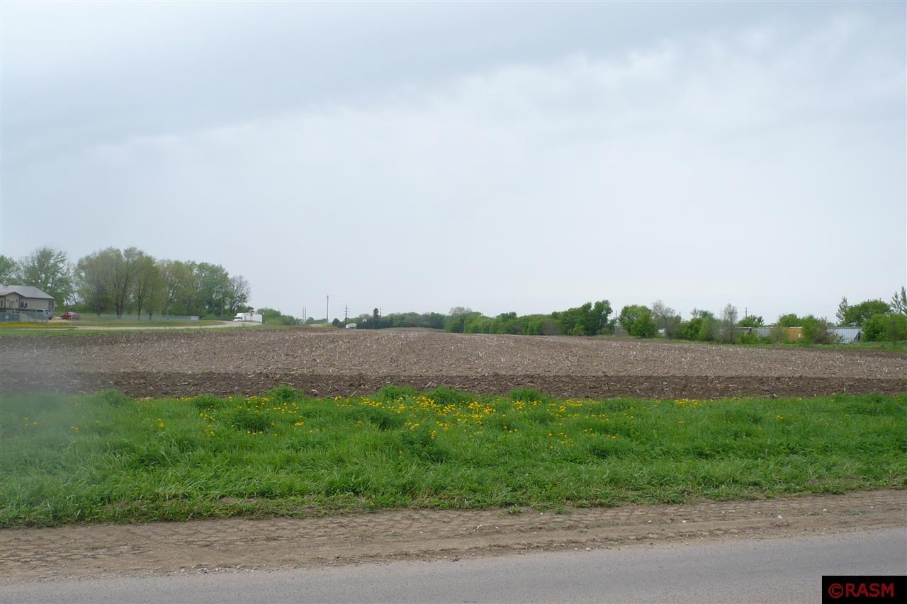 TBD County Road 29 New Ulm, MN 56073
